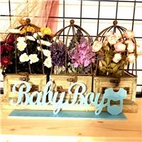 Pleksi Mavi Baby Boy Masa Süsü