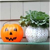 Cadılar Bayramı Halloween Kova