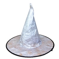 Cadılar Bayramı Gümüş Renkli Şapka