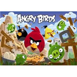 Angry Birds Kişiye Özel Amerikan Servis
