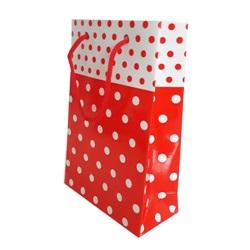 Kırmızı Puanlı Karton Çanta